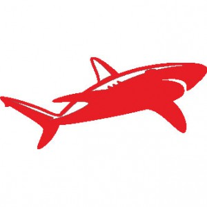 Hawaiian Shark Sticker